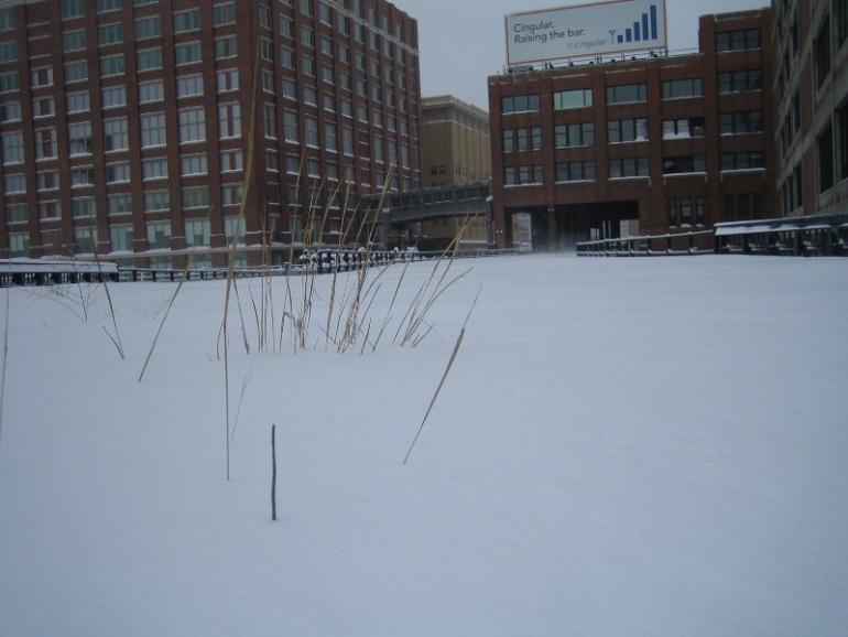 img_0918-blizzard.jpg