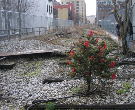 christmas tree on the high line
