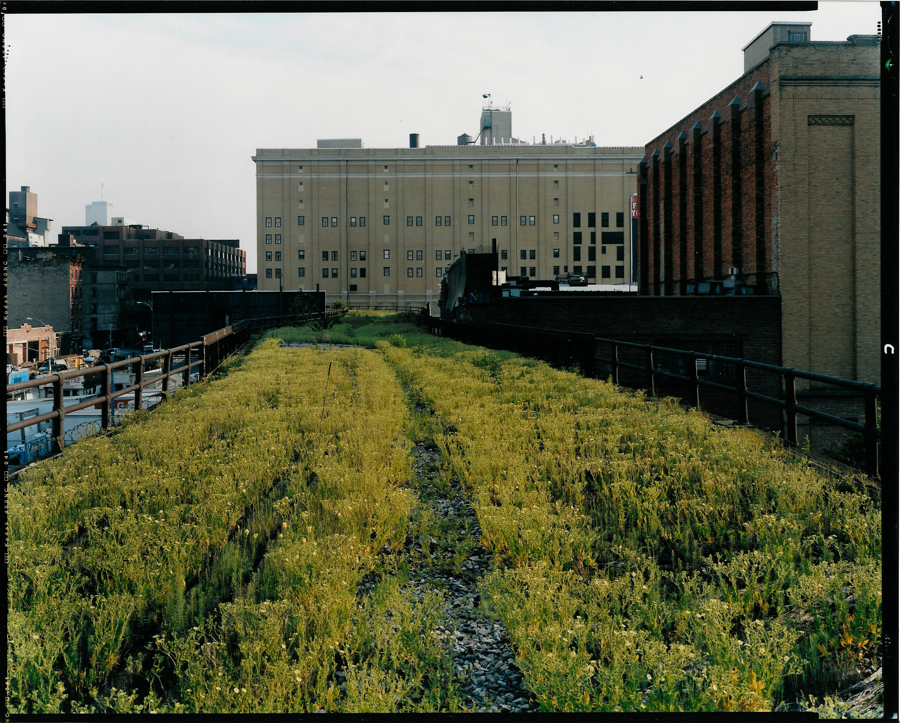Walking the High Line with Joel Sternfeld | High Line Blog