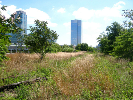 Image from the Embankment Preservation Coalition's website. Shows the view from up on the embankment.