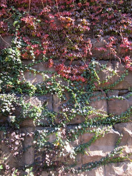 Close-up of the Embankment stonework. Photo by Robert Hammond
