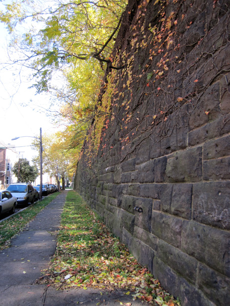 Fall leaves adorn the Embankment walls. Photo by Robert Hammond